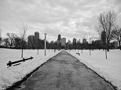 Winter (ancientlives) Tags: chicago illinois il usa lincolnpark park path walking skyline city cityscape downtown buildings towers skyscrapers architecture blackandwhite bw mono monochrome snow winter february tuesday 2018 frozen ice winterscene