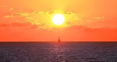 Sailing at sunset - Tel-Aviv beach - Follow me on Instagram:  @lior_leibler22 (Lior. L) Tags: sailingatsunsettelavivbeach sailing sunset telaviv beach sea telavivbeach israel