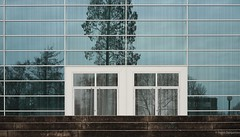 RWE Pavillon (frankdorgathen) Tags: building architecture glass window door facade reflection tree step geometrical rwepavillon philharmonie essen ruhrgebiet