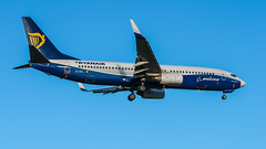 Ryanair EI-DCL pmb20-00101 (andreas_muhl) Tags: 7012018 737800 boeing boeing7378as eddh eidcl ham ryanair sonderlackierung aircraft airplane aviation paintedindreamlinerspecialcoloursoct2004mar2014 planespotter planespotting paintedindreamliner special colours oct 2004 mar 2014 painted dreamlinerrevised
