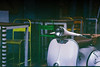 (suanhin) Tags: analog fujica st705 helios 442 manual flektogon 20mm carl zeiss jena kodak iso200