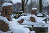 samsebeskazal-2322.jpg (samsebeskazal) Tags: winter newjersey ringwood