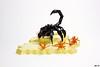 Cyber Scorpio (Devid VII) Tags: lego devidvii cyber scorpio devid vii moc black diorama