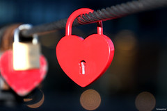 Our heart (fotowayahead) Tags: lock love endurance bridge copenhagen heart