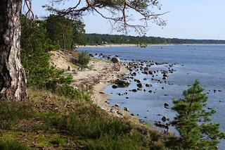 Laulasmaa rand