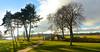 CROOME PARK SHADOWS (chris .p) Tags: nikon d610 croome winter december light shadows nt uk capture nationaltrust england 2017 view bridge worcestershire path