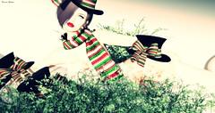 [ LsR ] - Sexy SnowWoman Costume (Pedrito Collazo) Tags: erotismo espera estilo etiquetaschristmas frasessecon hair hat libros maitreya moda soledad textos vidapoemafrases vivir