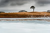 *** (Lee Ratters) Tags: sony a7 fe sel2870 priddy lone tree frozen lake somerset mendips winter snow
