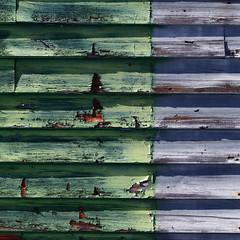 (jtr27) Tags: sdq1698l jtr27 sigma sd quattro sdq foveon 50mm f28 ex dg macro manualfocus abstract newhampshire nh newengland green building peelingpaint