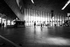 Going places (alideniese) Tags: blackandwhite bw 7dwf monochrome architecture building interior rotterdamcentraalstation station entrance plaza hall people light shadow alideniese rotterdam thenetherlands southholland streetphotography