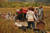 IMG_0458 (Kalina1966) Tags: bali island indonesia people rice field