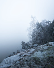 Kuuvannokka (tommi.vuorinen) Tags: ruissalo kuuvannokka turku finland airisto archipelago tree birch frozen mist fog forest shorefront waterside rock hill winter snow pine moss rocks mood atmosphere