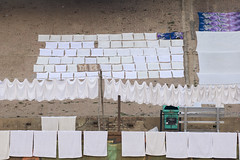 Drying patterns (Tim Brown's Pictures) Tags: india uttarpradesh varanasi benares gangesriver laundry washing dryingclothes up