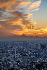 IMG_2356 (Jeff Amador) Tags: roppongi mori tower view night nightphotography light lights tokyo japan views skyline sunset