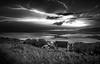 The Storm (Tom McPherson) Tags: black clouds heavens rain pro 1635mm 19mm explore prime d750 nikon storm river sky seascape mono wild lightning flash thunder beach sand blackwhite master photographer