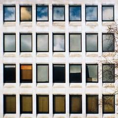 Tudor Square (Delay Tactics) Tags: sheffield windows grid tree film 28 square sky reflections