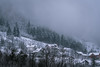 Winter came just on time (ekidreki) Tags: landscape landscapes snow snowy snowcapped sarajevo bosnia herzegovina mountain mountains nature natural light mist fog foggy sony sonyalpha a7r3 a7rm3 70200 70200gm 70200mm tree trees green photography