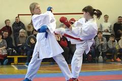 "turnir-po-karate-v-krugu-druzej-pamyati-romana-sedelnikova-2018-6 • <a style=""font-size:0.8em;"" href=""http://www.flickr.com/photos/146591305@N08/39294392634/"" target=""_blank"">View on Flickr</a>"