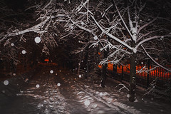 snowfall (Art Smet) Tags: moscow snow snowfall dark trees