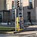 MONTY BY KIM BALE [BAGGOT STREET - DUBLIN CANVAS PROGRAMME]-136924