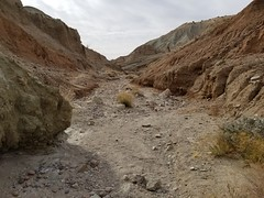 20180210_095622 (jason_brez) Tags: canyon california desert landscape