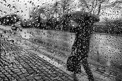 Dry (Birdhouse camper) Tags: copenhagen denmark window droplets dof iphone iphone6s shotoniphone6s silhouette umbrella street blackandwhite blackwhite
