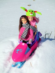 Winter Fun (flores272) Tags: skipper barbie barbiedoll fairybarbie madetomovebarbie madetomove snow winter outdoors skipperdoll barbieskijet snowmobile toy toys doll dolls
