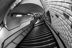 MC Peleng 8 mm f/ 3.5 A ( МС Пеленг 3,5/8А ) - DSCF4553 (::Lens a Lot::) Tags: mc peleng 8 mm f 35 a paris | 2017 fisheye darkness underground noise night light street streetphotography bw black white monochrome vintage manual prime fixed length classic lens ruelle personnes route bâtiment metro subway gate station lignes train plafond russian architecture fenêtre