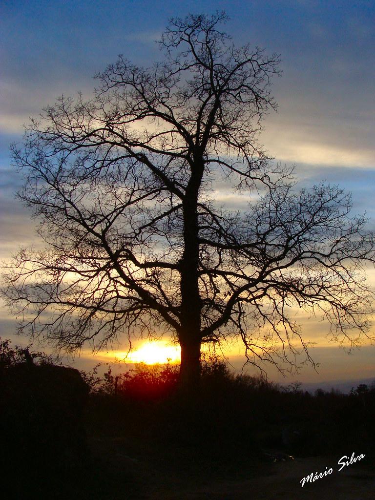 Águas Frias (Chaves) - ... o sol querendo romper por entre as nuvens ...