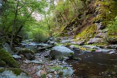 Oregon Creek (buffdawgus) Tags: autumn california canon5dmarkiii canonef24105mmf4lisusm fall landscape lightoom6 northerncalifornia oregoncreek sierranevadafoothills topazsw yubacounty