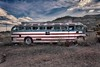 American Cruiser II (Edmonton Ken) Tags: bus automobile transportation american flag design red white blue abandoned old shattered arizona travel ride dream coach sky grass dirt grunge faded hdr