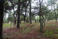 Duck Creek Cemetery (robincagey) Tags: capecod massachusetts nature newengland duckcreek cemetery graveyard headstone wellfleet