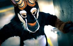 8M5A6762-2 (loboloc0) Tags: suit suiter fur fursuit furry con convention furcon further confusion fandom animal animals costume cosplay dance blackandwhite monochrome 2018 18
