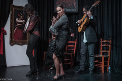 Granada, Andalucía (Yee-Kay Fung) Tags: andalucia dance granada flamenco