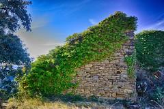 Pueblo abandonado de Aguilar (Huesca-Aragón-España) (Carlos M. M.) Tags: sobrarbe huesca aragón pirineos peñaguara hdr sony sonyalpha6000 nature naturaleza