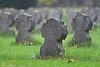 Gräber (Susanne Weber) Tags: grab gräber stein friedhof gras natur