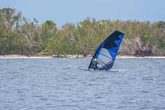 Sailboarding (Tedj1939) Tags: kiteboarding paddleboarding watersports indianriver