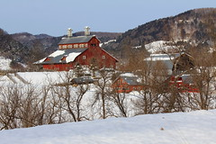 Untitled (witajny) Tags: winter winterlandscape winterforest trees landscape landscapephotography village buildings woodenarchitecture woodenbuilding snow mountains sky vermont oldbarn barn countryside tree field mountain building