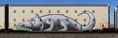 Head (quiet-silence) Tags: head graffiti graff freight fr8 train railroad railcar art autorack bnsf automax bnsf314097
