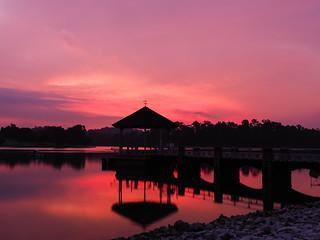 Sundown silhouettes
