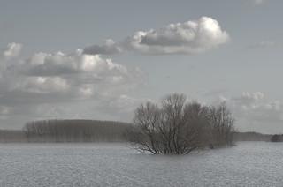La vie en Maine-et-Loire - 12