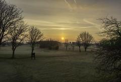 Haze and frost make a beauty of a sunrise (Mark240590) Tags: landscape green golf sunrise