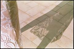 sun.on.her.back (the.crystalimage) Tags: film filmphotography filmphoto filmcamera filmfeed filmlove filmisnotdead analogphotography analog ishootfilm analogue analoguephotography filmcommunity filmproject grain grainisgood olympus olympusom2n olympuszuiko50mmf18 colorsfilm200
