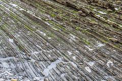 Flysch en playa Sakoneta (Udri) Tags: españa europa mar paisaje playa spain beach deba estratificacion estratos euskadi flysch geologia geology gipuzkoa guipuzcoa itziar landscape paisvasco pentaxk3 sakoleta sea strata stratificacion turbiditas turbidite zumaia