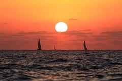 Sailing at sunset -Tel-Aviv beach (Lior. L) Tags: sailingatsunsettelavivbeach sailing sunset telaviv beach telavivnorthbeach sea sky sailboats israel