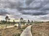 Miramar Pineland Park 01-20180120 (Kenneth Cole Schneider) Tags: florida miramar miramarpinelandpark