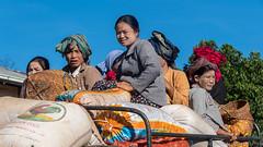Trek - Jour 3, entre Mew Daw et le dernier village (Jacques_VDS) Tags: métierfonction agriculteur myanmarbirmanie mm