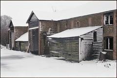 the day it snowed (steve-jack) Tags: nikon f5 50mm fujicolour c200 film 135 tetenal c41 kit epson v500 buntingford hertfordshire