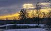 Tönnersjö golfbana -9gr (karinwigroth) Tags: sunrise below zero fountain cold snow sun morning