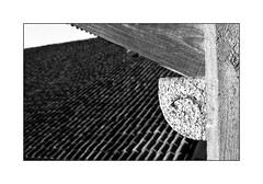 forme  ;/) (schyter) Tags: kiev20 arsenal slr sovietcamera mc helios81h 253 soviet lens lightmeter onboard analogica analogic film pellicola bw bn bianconero blackwithe 135 35mm rollei rpx100 adox adonal 125 tank ap compact homemade development scanned epson v600 basiasco lodigiano lodi legno